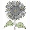 Sunflower blackwork kit